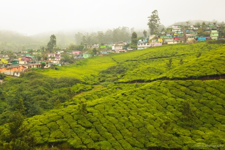 Munnar, The beautiful town